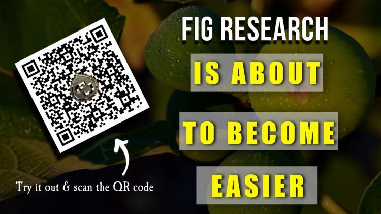 Can Fig Database Really Become That Much More Easy To Use?