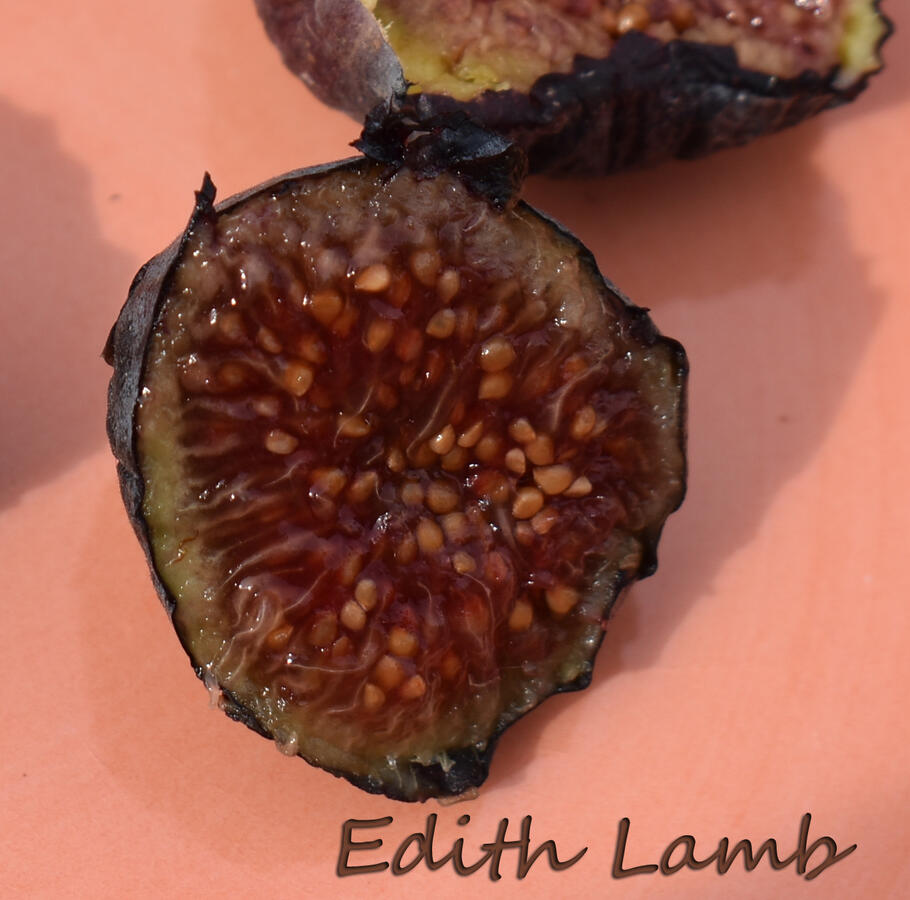 Edith's Raspberry Jam