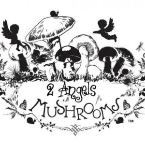 2AngelsMushrooms